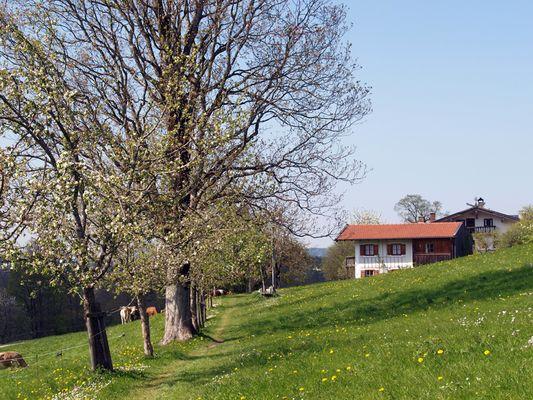 Höhenweg zwischen Elbach und Fischbachau – Kreis Miesbach