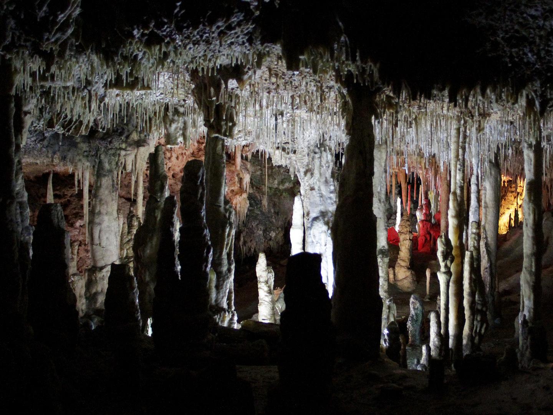 Höhlenbilder