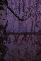 Hörnauer See im Abendlicht