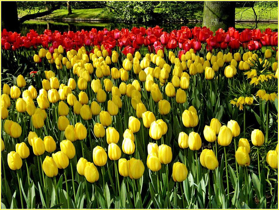 Hoffen auf den Frühling 2