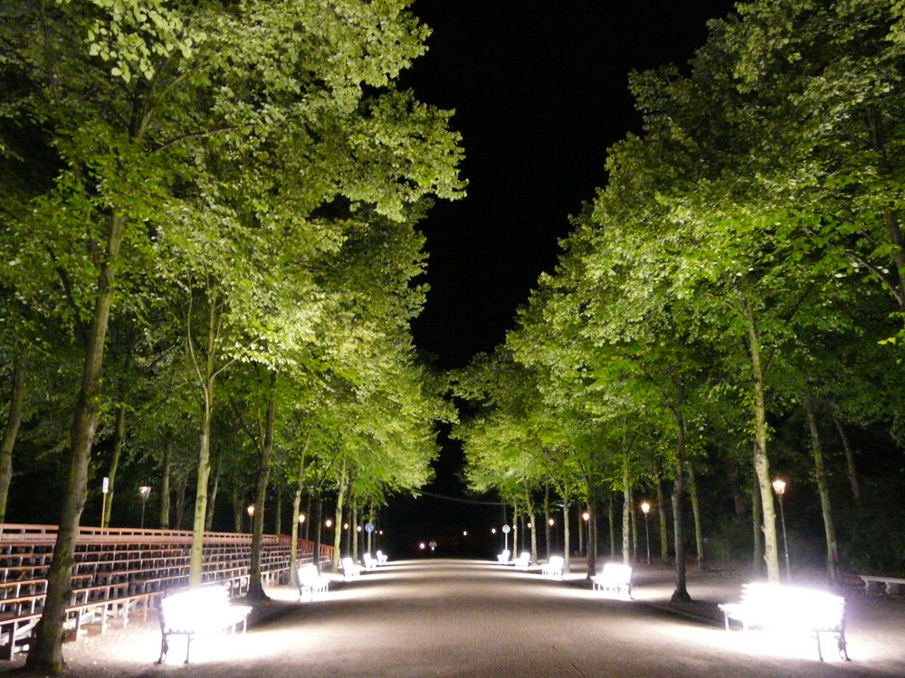 Hofgarten mit Beleuchtung!