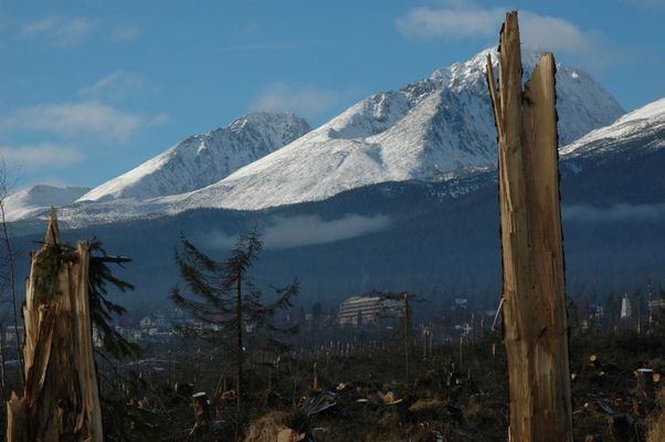 Hohe Tatra nach dem Orkan...