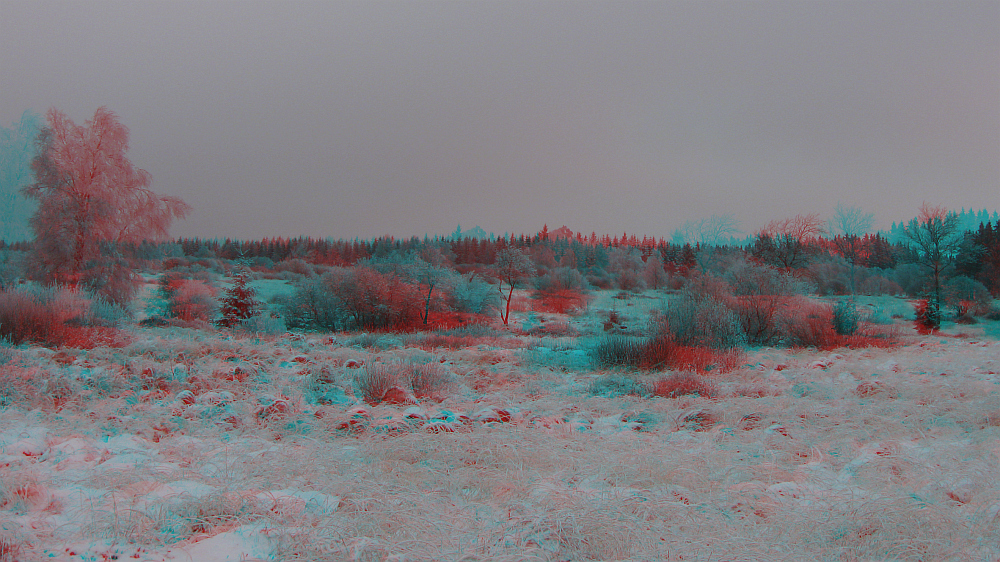 Hohes Venn (3D-Bild mit Rot/Cyan-Brille betrachten)