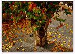 hojas del árbol caidas...