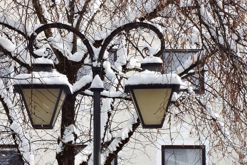 Hoki im Winter