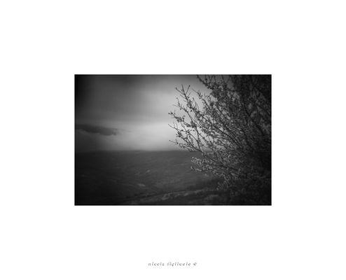 Holga lens series (1/)
