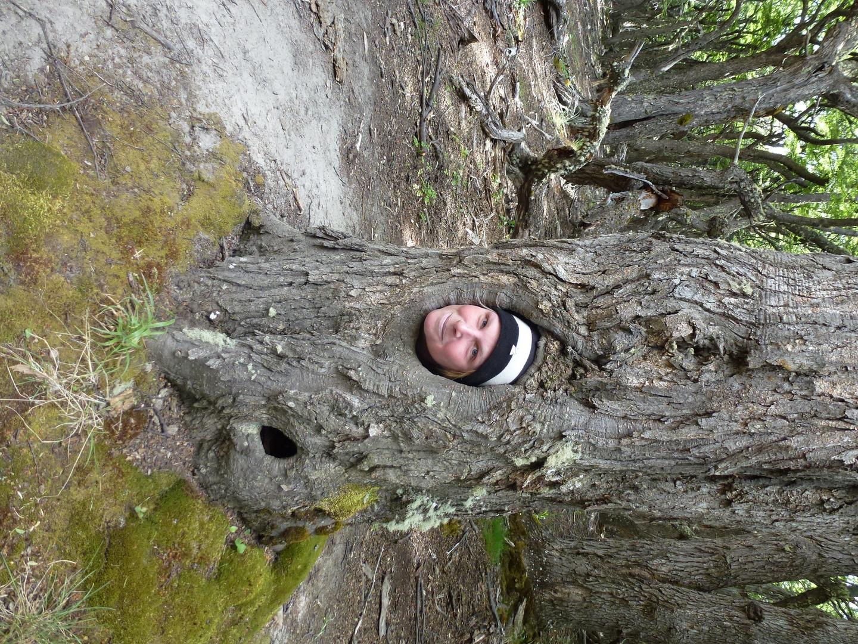 Holla, die Waldfee Miriam