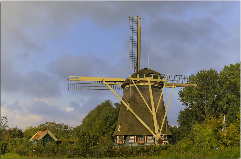 Holländerwindmühle