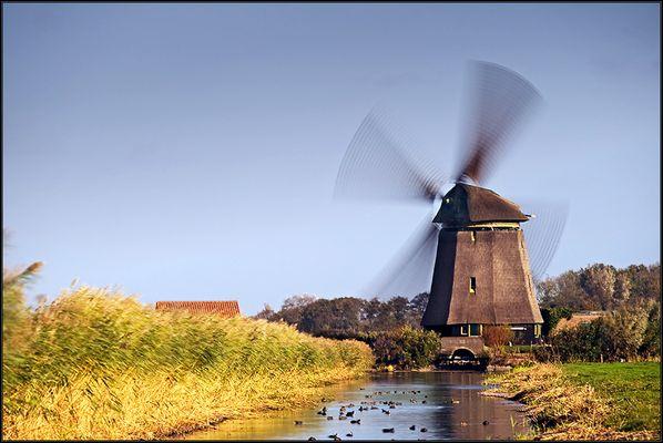 *Holland*