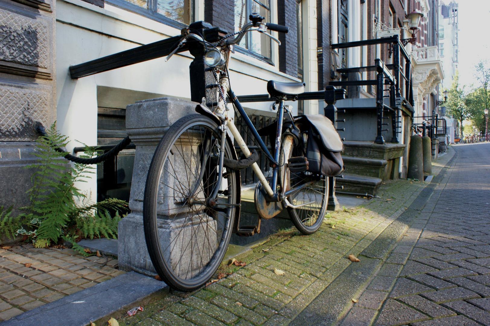 Hollandrad in Holland
