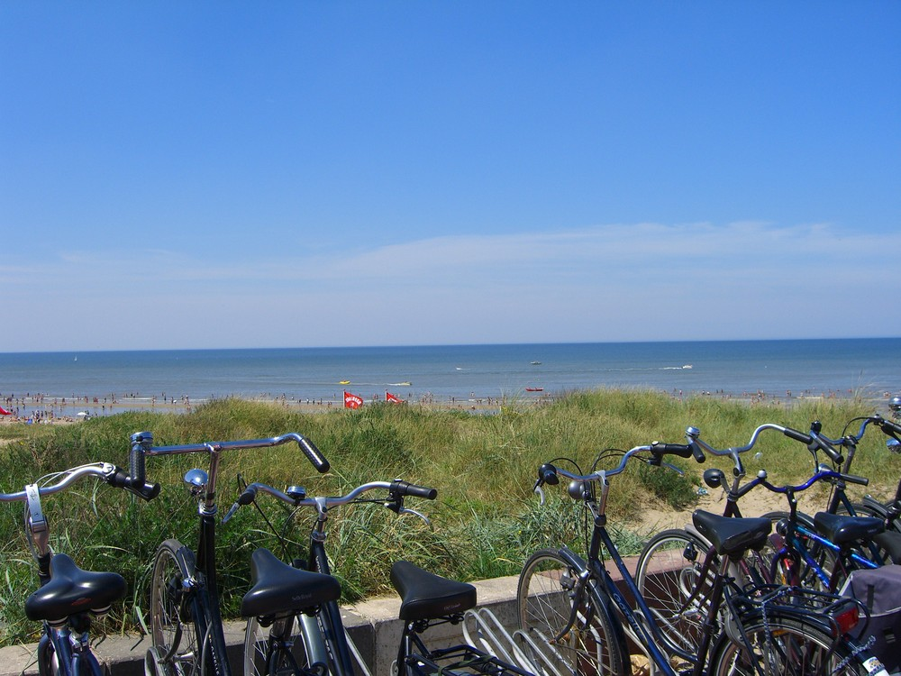 Hollands Traumstrand