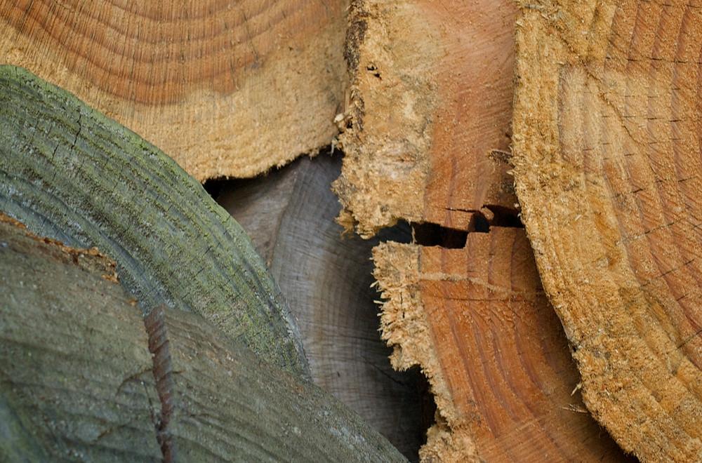 Holz einmal anders.