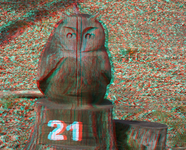Holz-Eule