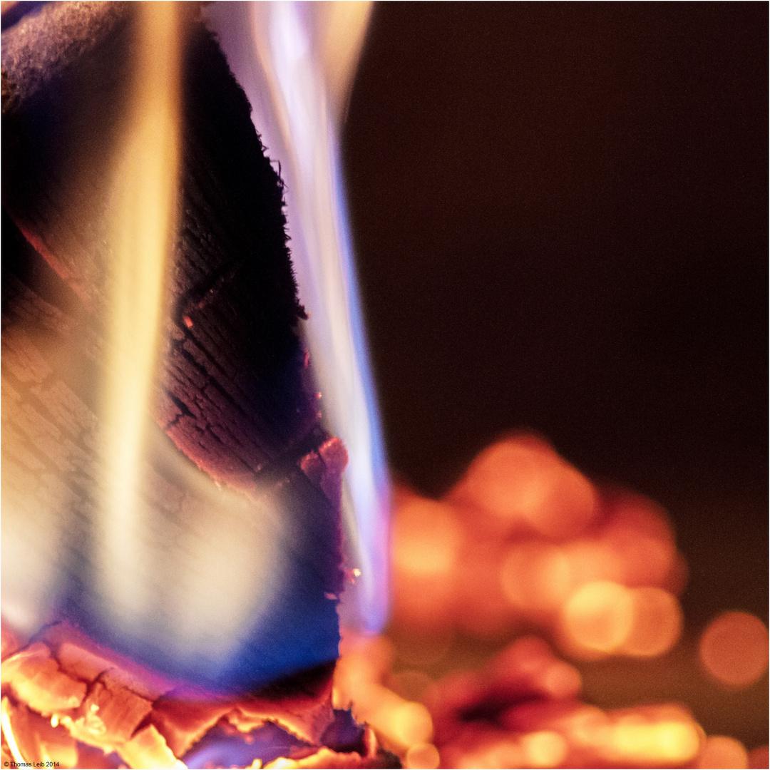 Holz.... Feuer und Flamme…