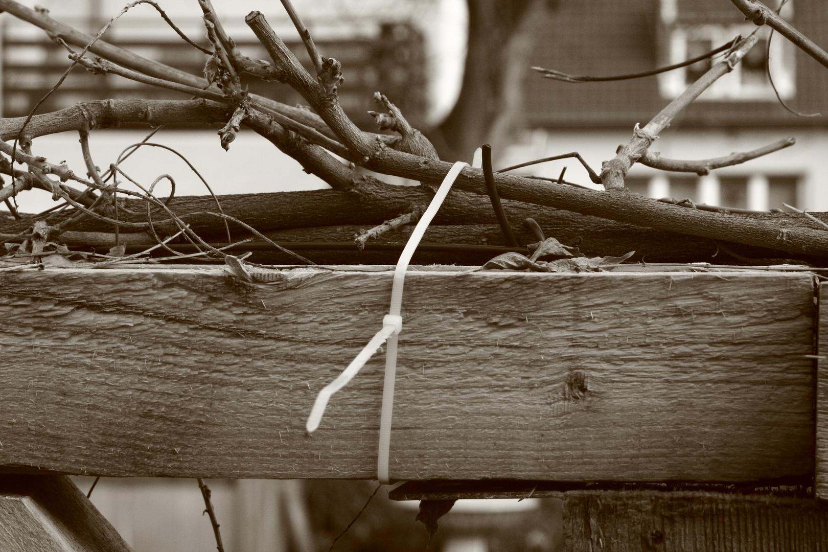 Holz gefesselt