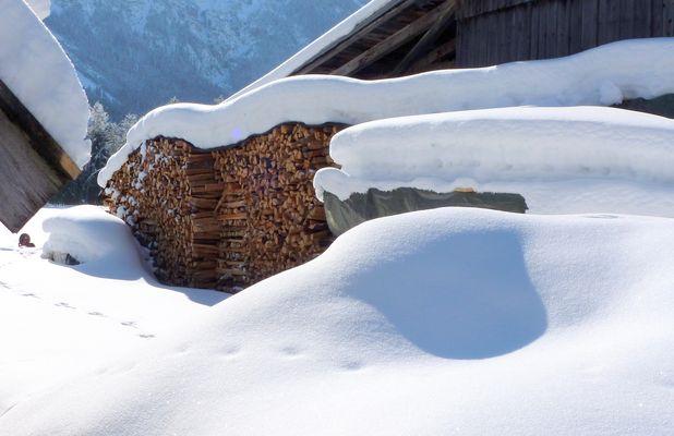 Holz hinterm Haus......