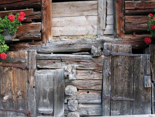Holz in den Alpen