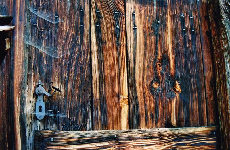 Holz ist
