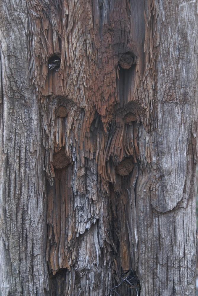 Holz und Rost und alt...