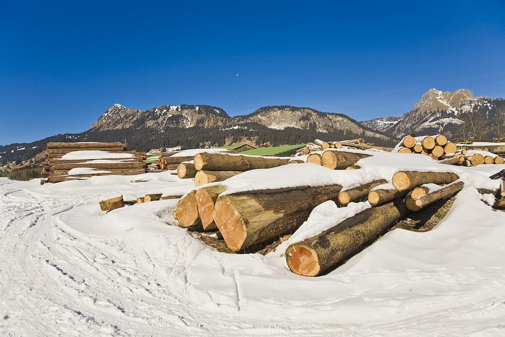 Holz vor de Hütten...