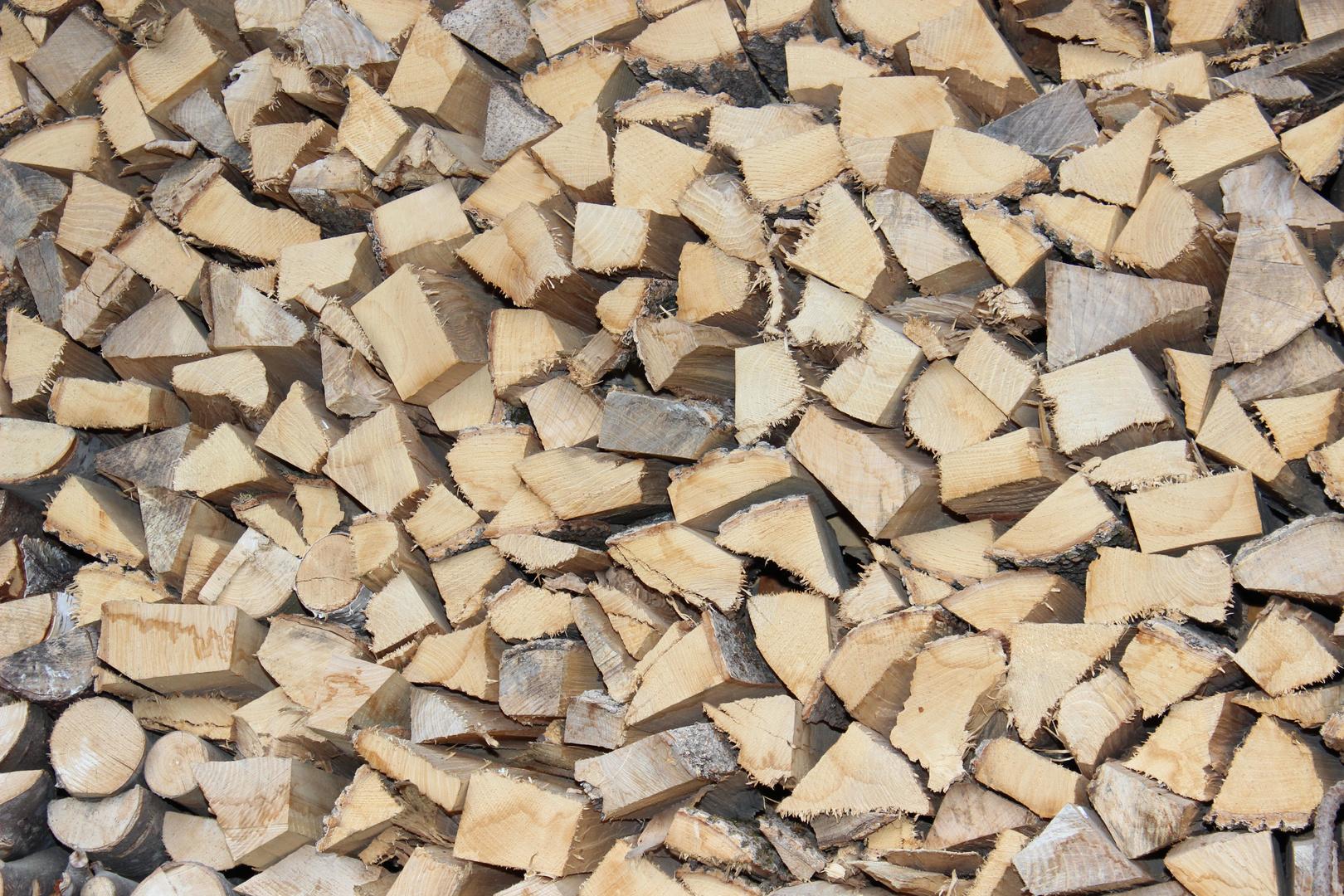 Holz vor der Hüddn...