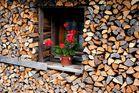 Holz vor der Hütten...