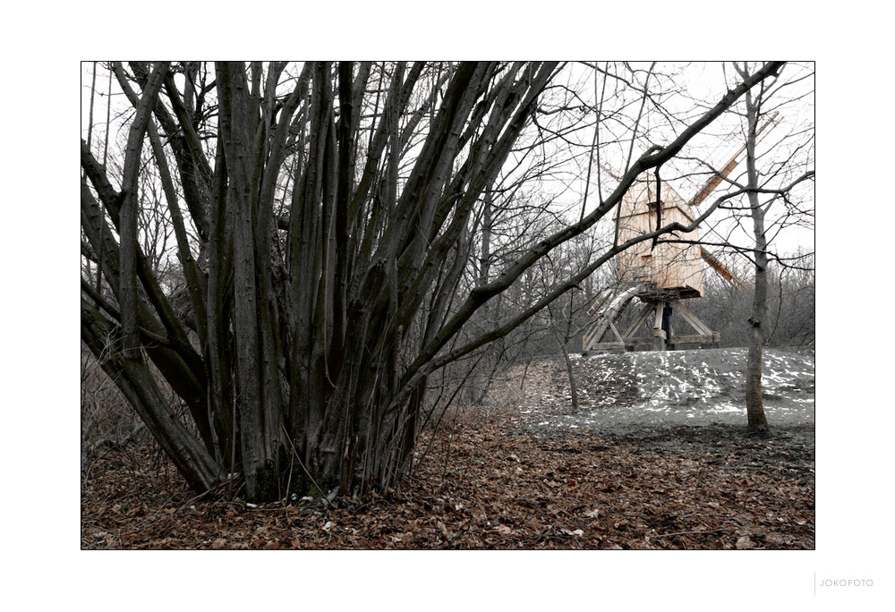 Holzangelegenheiten