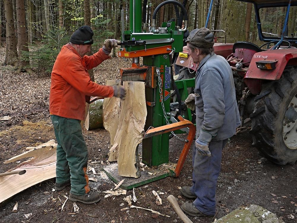 Holzarbeiter im Wald