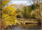 Holzbrücke an Siegmündung im Herbst (Golden Bridge)