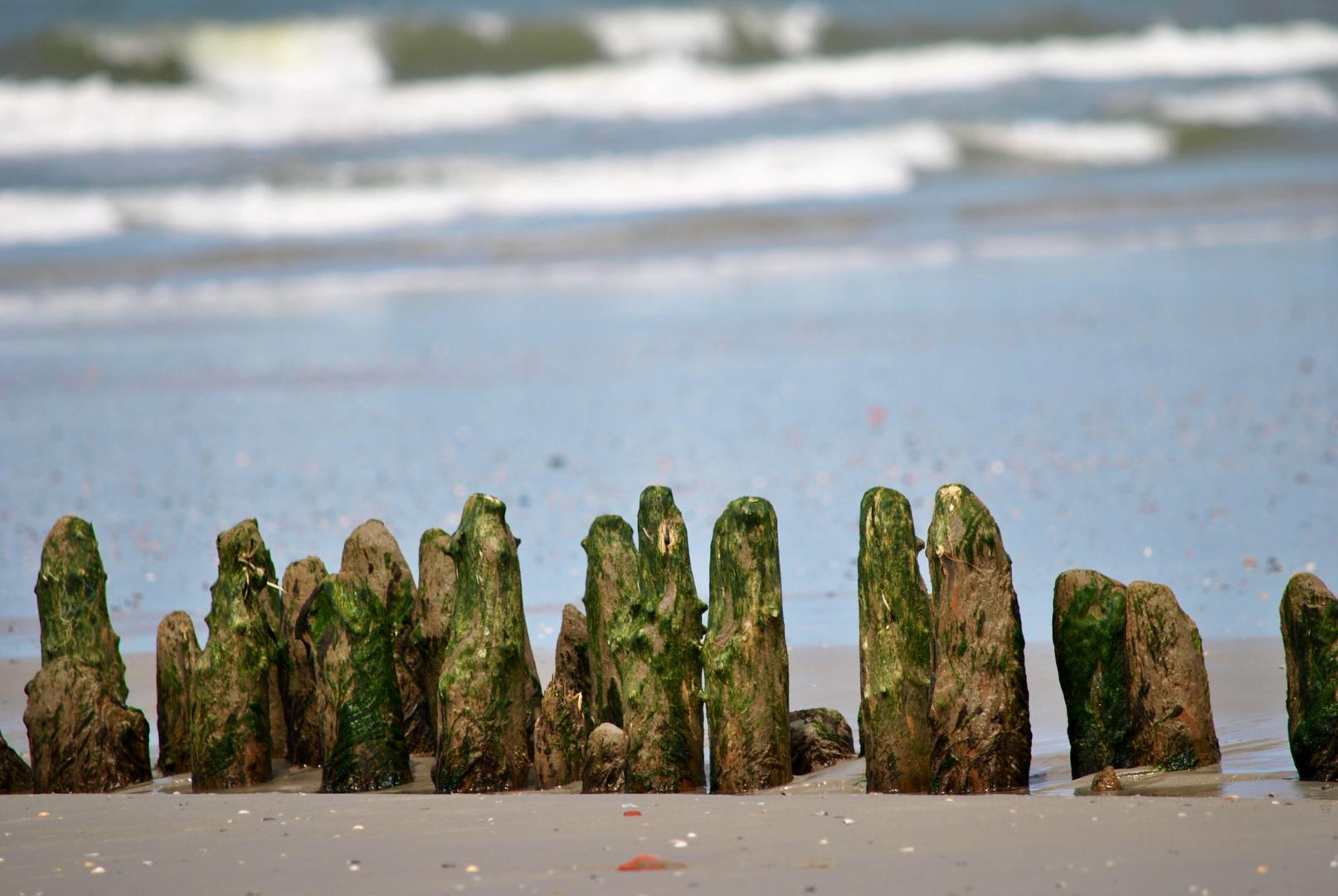 Holzbuhne am Strand