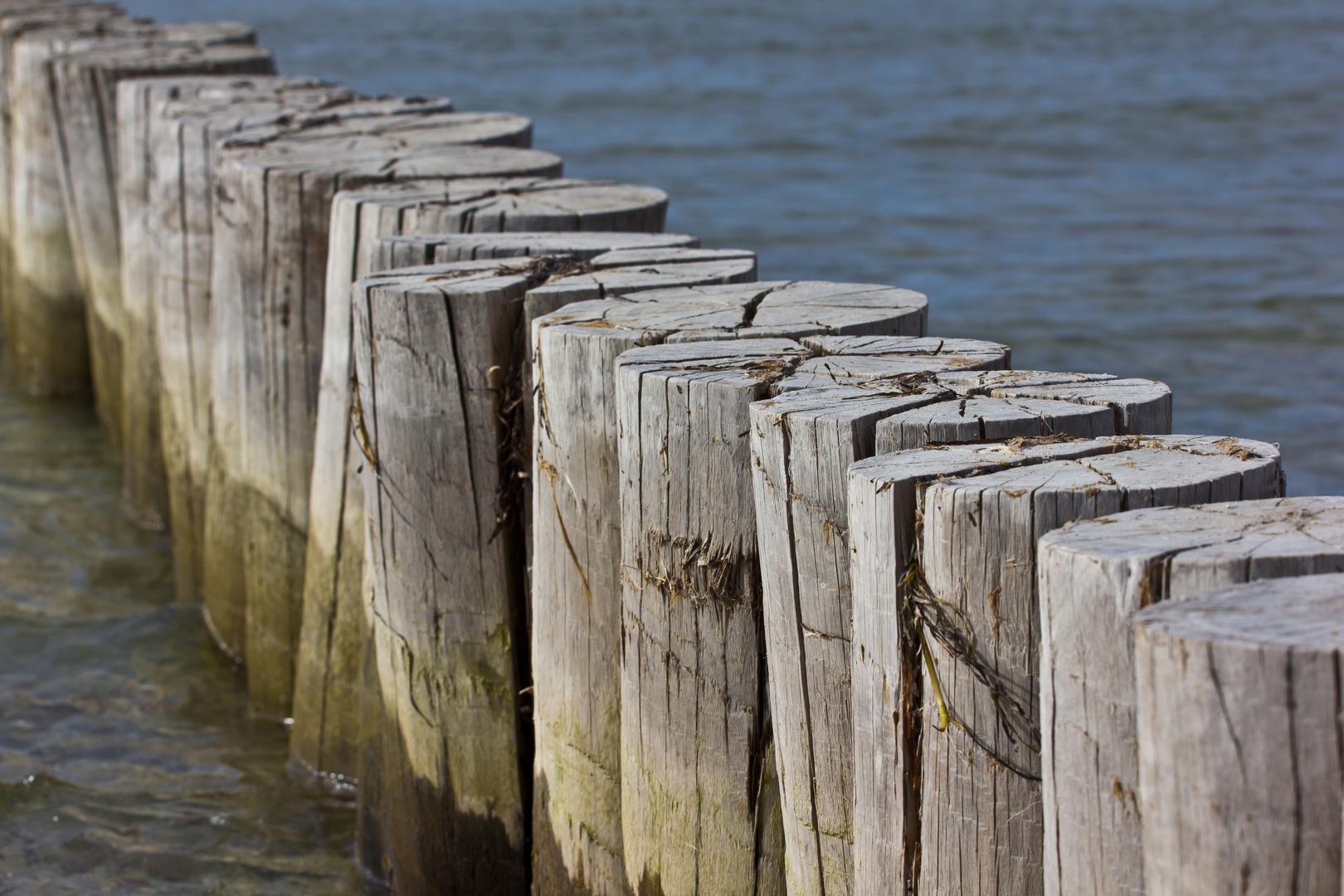 Holzbuhnen in der Ostsee