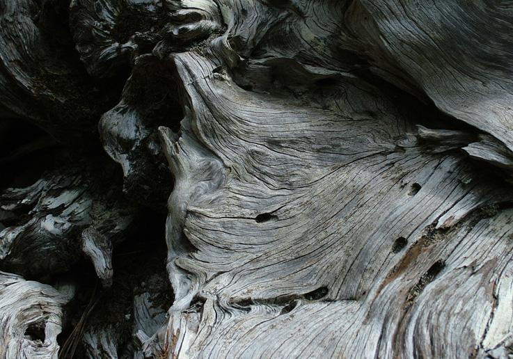 Holzlandschaft