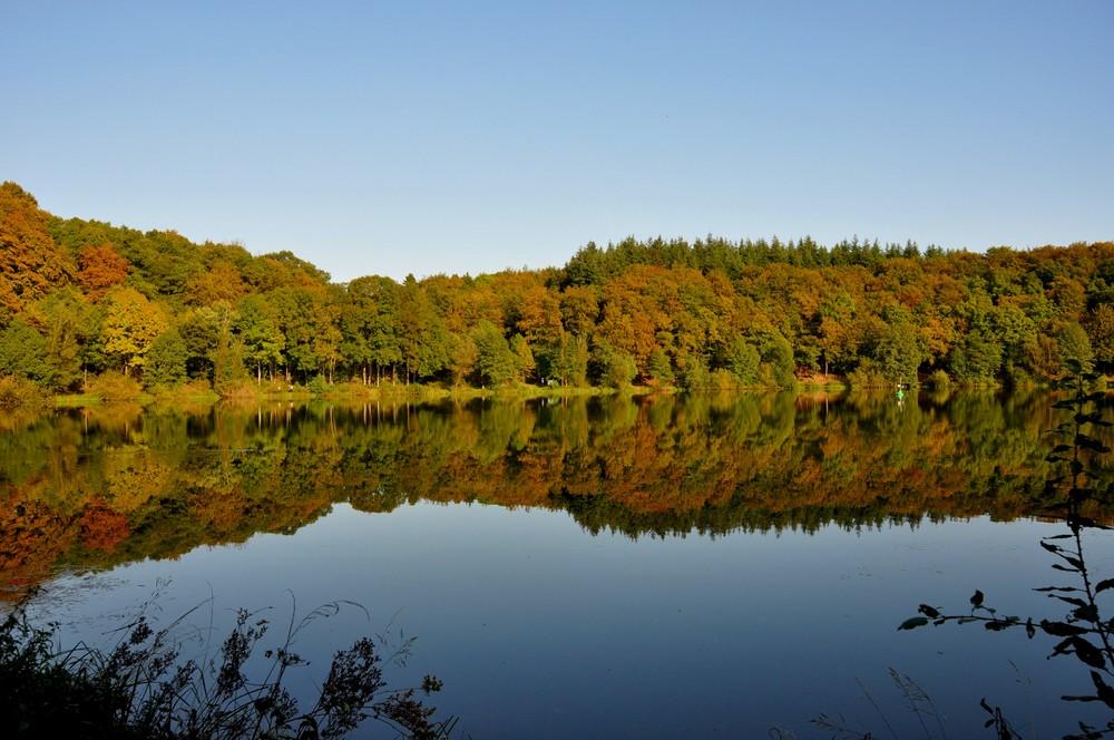 Holzmaar in der Eifel im Herbst
