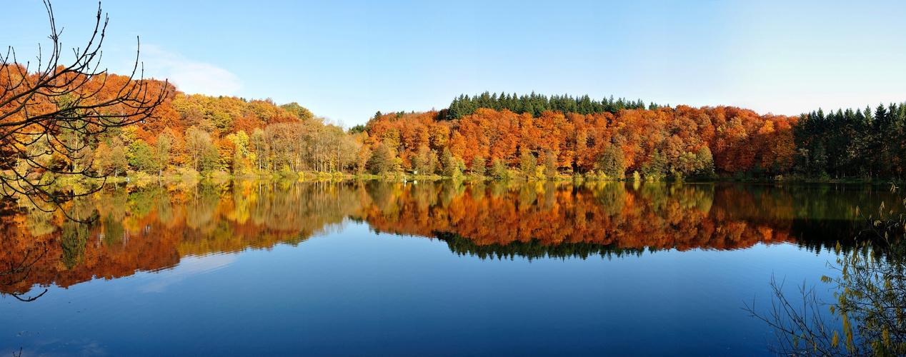 Holzmaar - Vulkaneifel