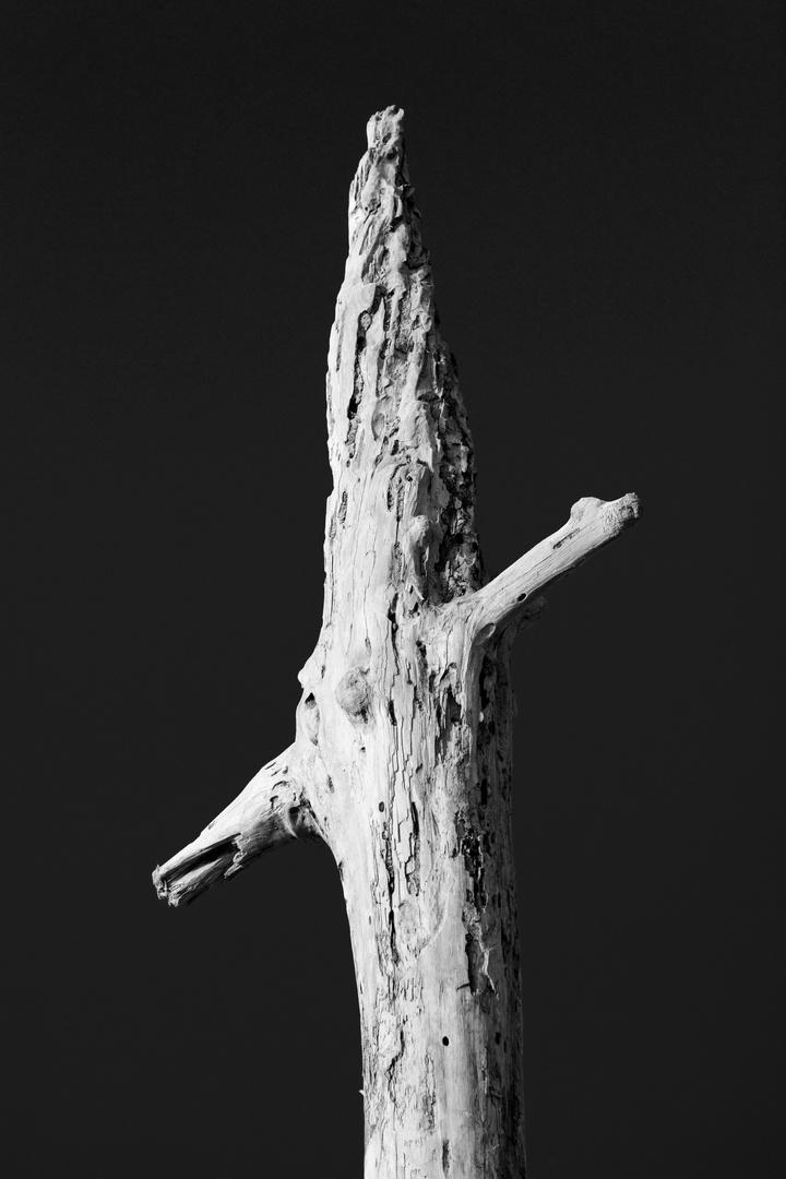 Holzmast in S/W
