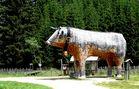 Holzochse auf der Teichalm (Steiermark)