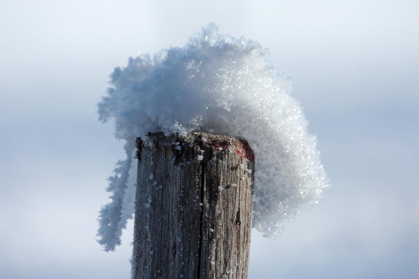 Holzpfahl mit Wintermütze