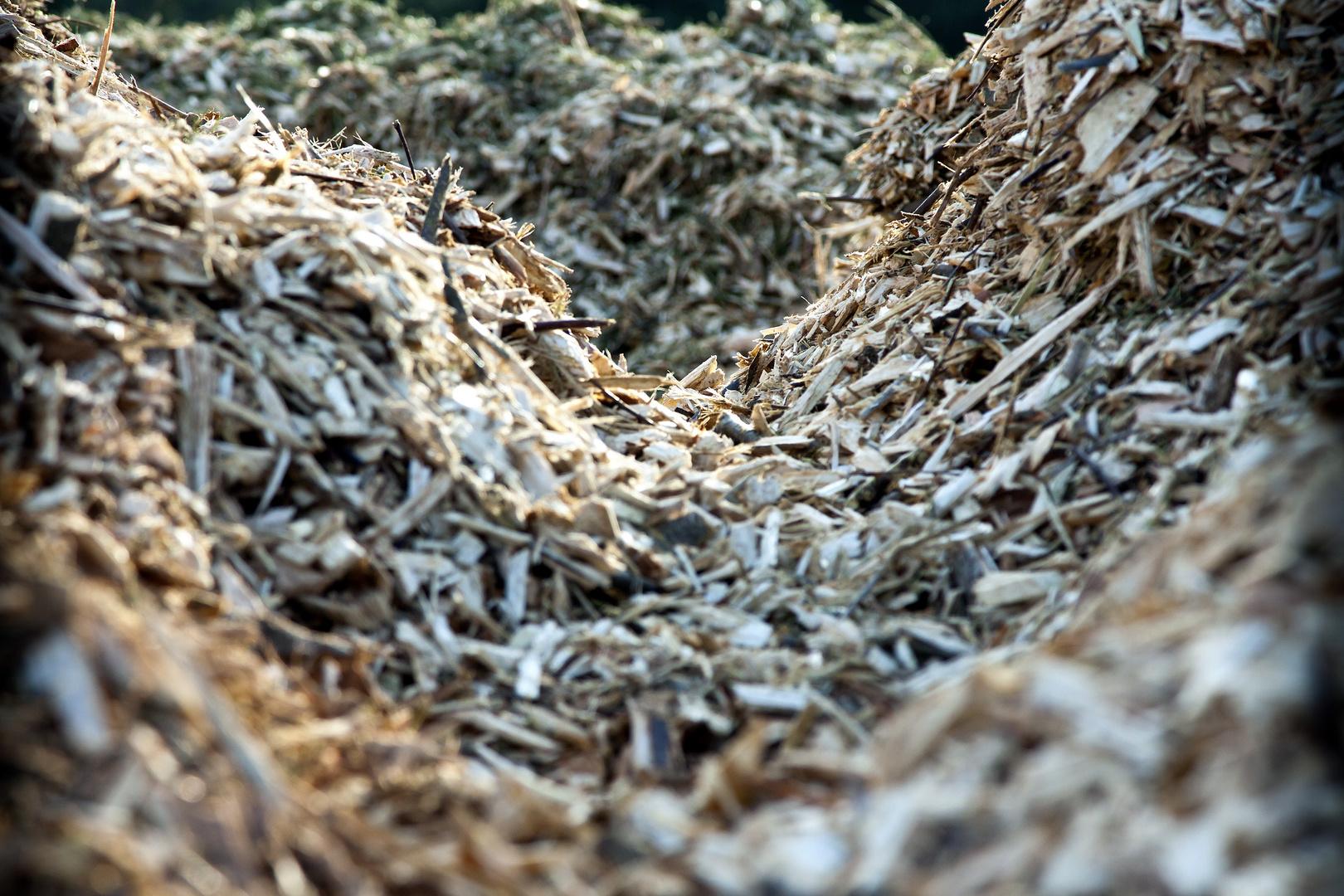 Holzschnipsel