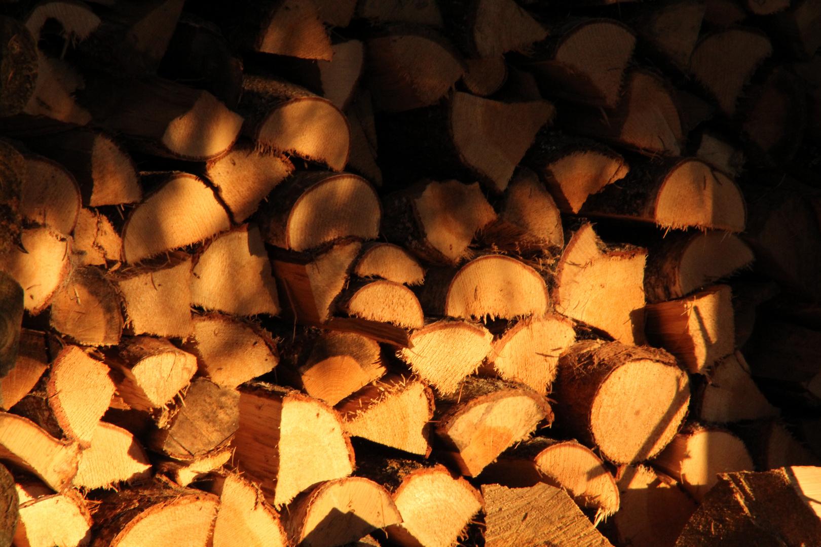Holzstapel in der Abendsonne