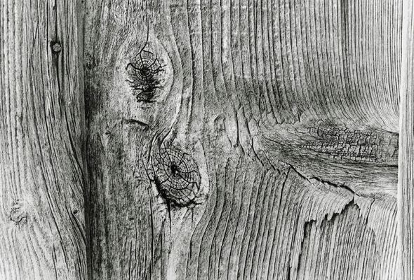 holzstruktur mit nagel