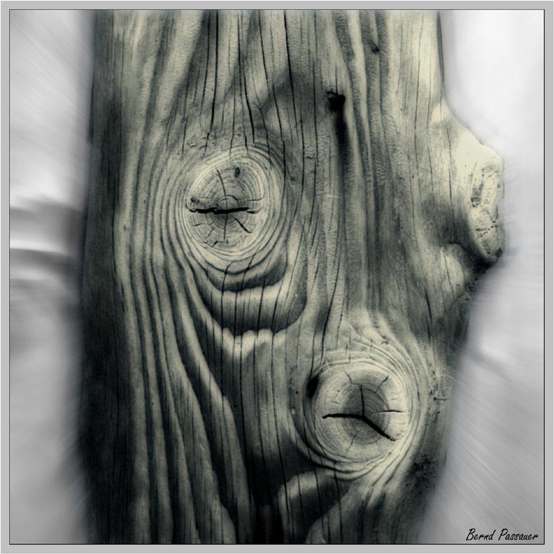 Holzstruktur_1