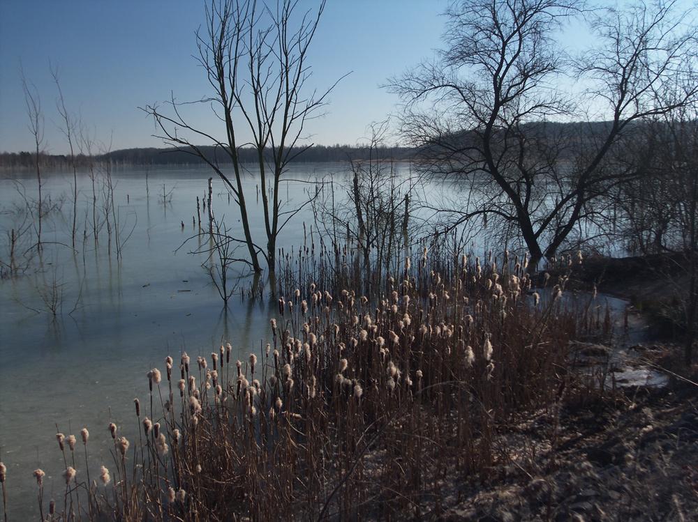 Holzweißiger Ost-See