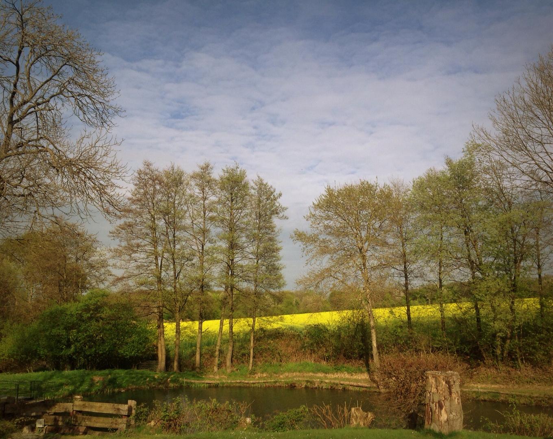 Holzwickeder Landschaft
