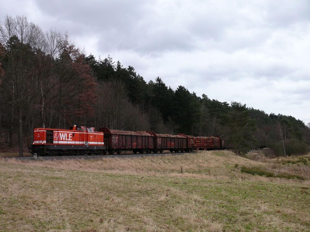 Holzzug1