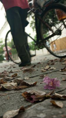Hombre y Bicicleta