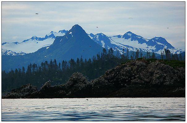Homer; Alaska