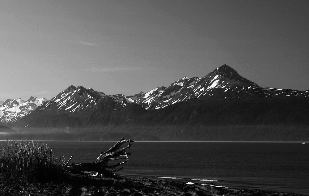 Homer - Alaska