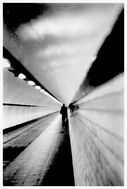 Hommage aan Guillaume Vogels