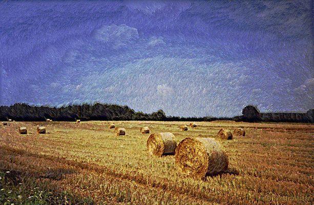 Hommage to van Gogh