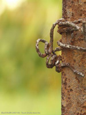 Homme en fil de fer : Grimpeur